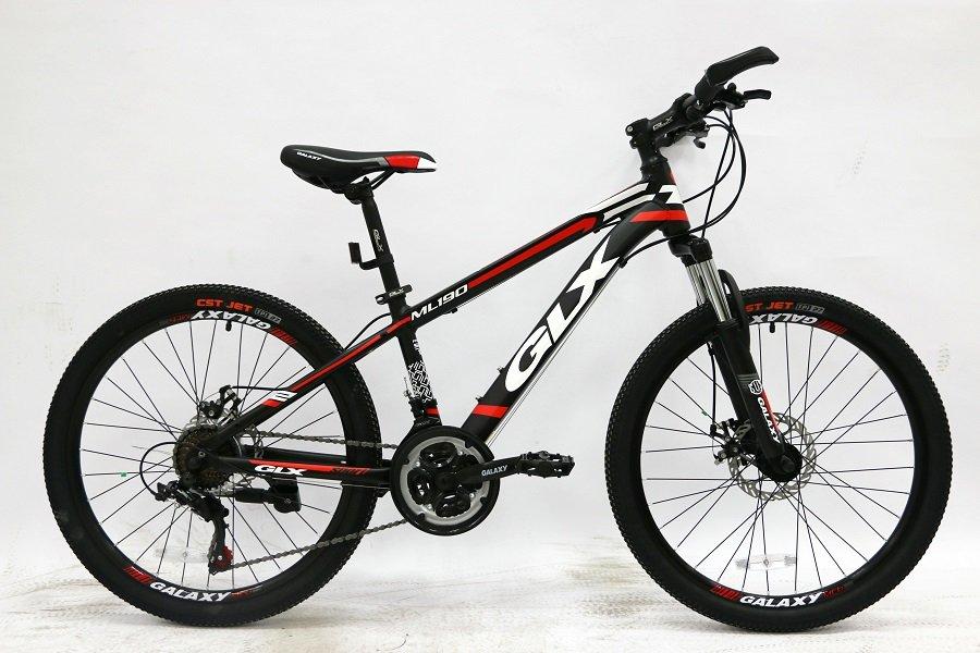Xe đạp đẹp