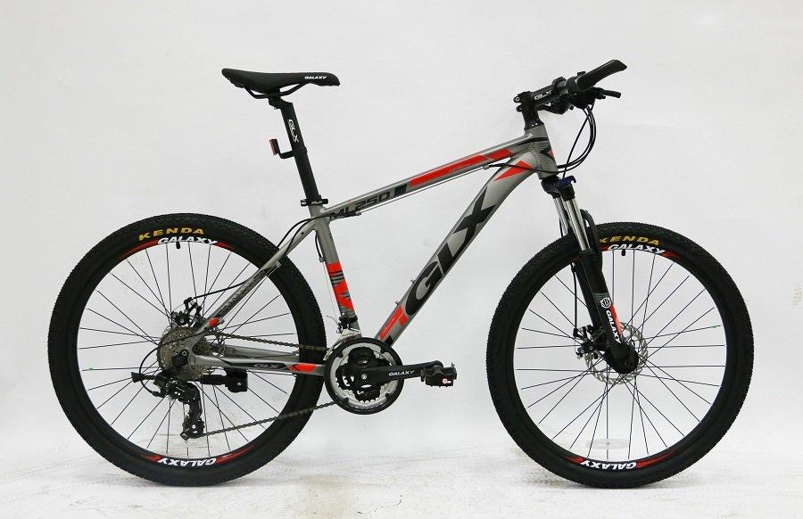 xe đạp đẹp 2